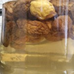 梅シロップから出した梅の実は保存できる?活用できる料理は何がある?