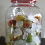 梅シロップの作り方 青梅と完熟梅どちらがいい?砂糖は何を?酢は必要?